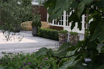 Hoveniers Nijmegen Arnhem Tuinontwerp- en Adviesbureau Marc Denkers Tuinen Tuinarchitect Tuinaanleg Tuinadvies Tuinontwerper Tuinplan Vijver Planten Bestrating